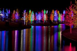 Solar Christmas Lights Have A Holly Jolly Solar Powered Christmas